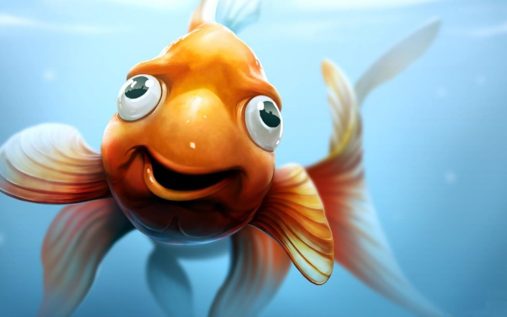 Funny Fish wallpapers HD