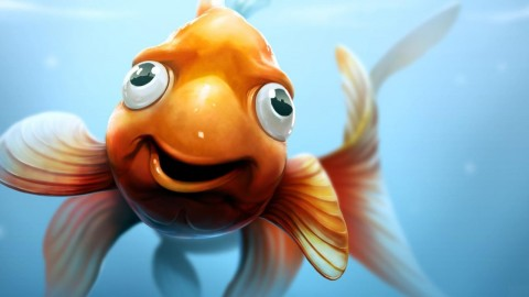 Funny Fish wallpapers high quality