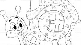 Funny Snails Desktop Wallpaper