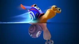 Funny Snails Wallpaper HQ