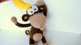 Monkey And Banana Photo