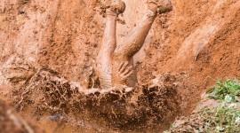 Mud Wallpaper Full HD