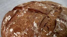 Rye Bread Wallpaper Download Free