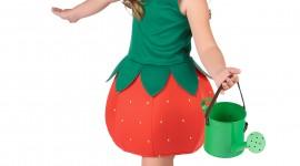 Strawberry Costume Wallpaper For Mobile#1