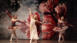 The Nutcracker Ballet Photo