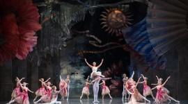 The Nutcracker Ballet Wallpaper