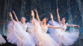 The Nutcracker Ballet Wallpaper For IPhone