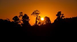 4K Silhouette Sunset Photo