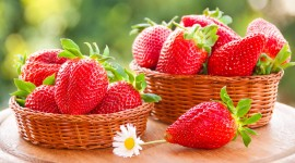 4K Strawberry Wallpaper Download