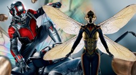 Ant-Man And The Wasp Best Wallpaper