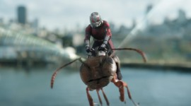 Ant-Man And The Wasp Wallpaper Free