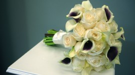 Callas Flowers Wallpaper For Desktop