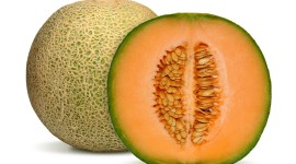 Cantaloupe Wallpaper Free