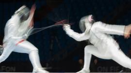 Fencing Wallpaper