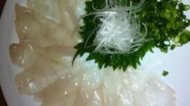 Fish Fugu Wallpaper For IPhone