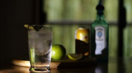 Gin And Tonic Photo