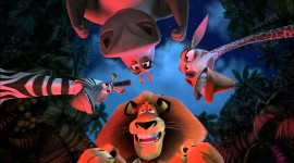 Madly Madagascar Wallpaper Gallery