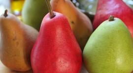 Pears Photo Free