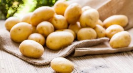 Peeling Potatoes Wallpaper HD