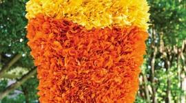 Piñata Wallpaper For IPhone Download