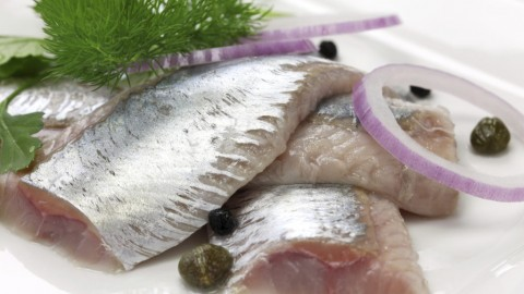 Pickled Herring wallpapers high quality