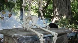 Skeleton Wallpaper For IPhone Download