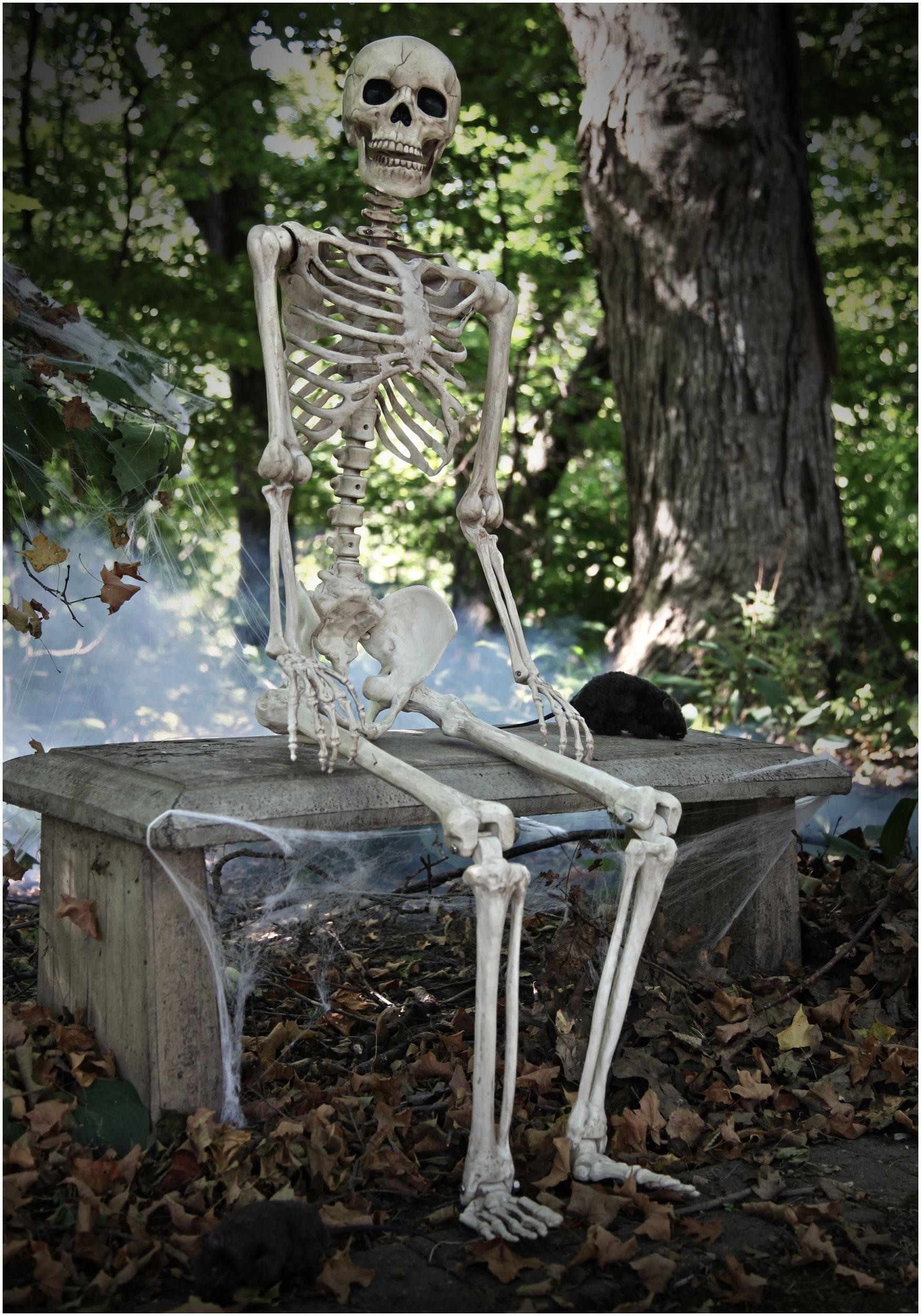 Halloween Skeleton Wallpaper.Skeleton Wallpapers High Quality Download Free