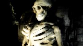 Skeleton Wallpaper For PC