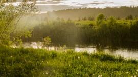 Summer Rain Photo Free