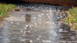 Summer Rain Wallpaper For PC
