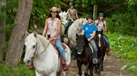 Trail-Riding Wallpaper 1080p
