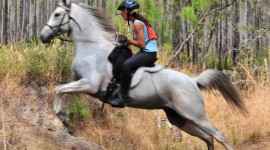 Trail-Riding Wallpaper Download
