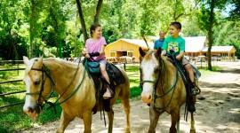 Trail-Riding Wallpaper Download Free