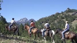 Trail-Riding Wallpaper HQ