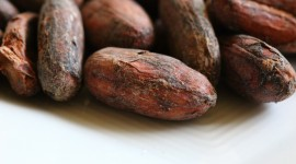 Cocoa Beans Best Wallpaper