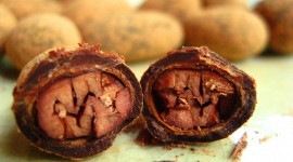 Cocoa Beans High Quality Wallpaper