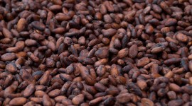 Cocoa Beans Wallpaper Full HD