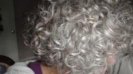 Gray Hair Desktop Wallpaper
