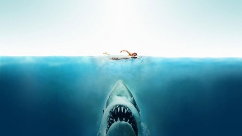 Jaws wallpapers high quality