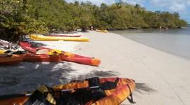 Kayaks Wallpaper