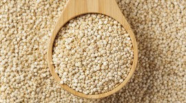 Quinoa Wallpaper Background