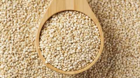 Quinoa wallpapers high quality