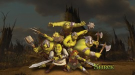 Shrek Forever After Aircraft Picture