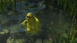 Shrek Forever After Photo