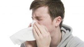 Sneezing Wallpaper Gallery