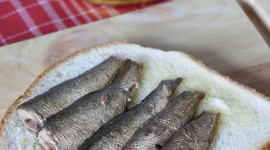 Sprats Wallpaper For IPhone