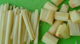Sugarcane Wallpaper Download Free