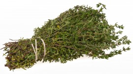 Thyme High Quality Wallpaper