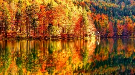 4K Autumn Photo Download