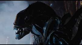 Aliens Desktop Wallpaper For PC
